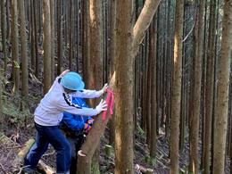 十津川村での林業体験_奈良の木 造形演習